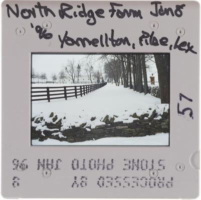 North Ridge Farm Yarnallton Pike, Lexington