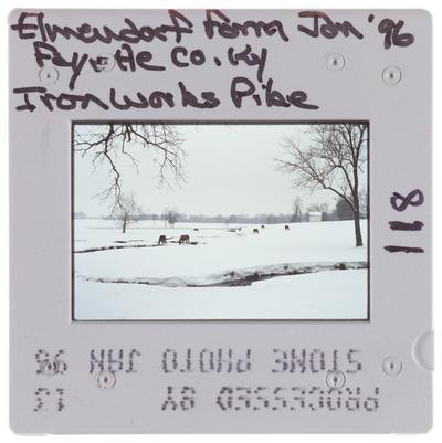 Elmendorf Farm Fayette County, Kentucky Ironworks Pike