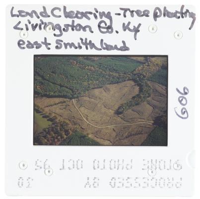Land clearing - tree planting Livingston County, Kentucky, east Smithland
