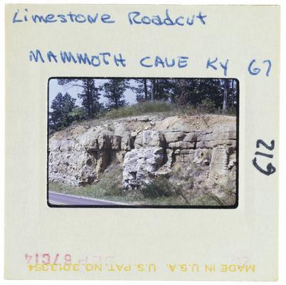 Limestone Roadcut Mammoth Cave, Kentucky 67