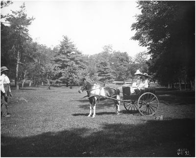 Margaret Wickliffe Preston (1885-1964) and unidentified girl in a pony-drawn buggy