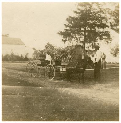 Unidentified man with a horse-drawn buggy