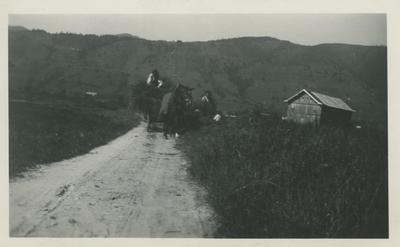 Horse pulling wagon.