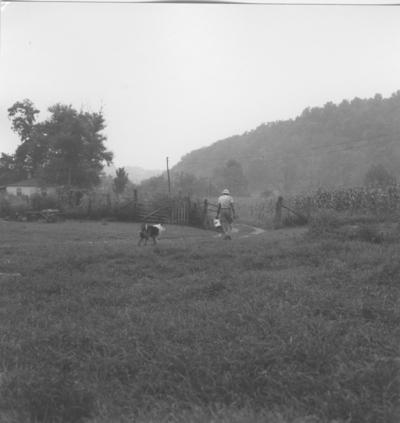 Man and dog walking to do milking