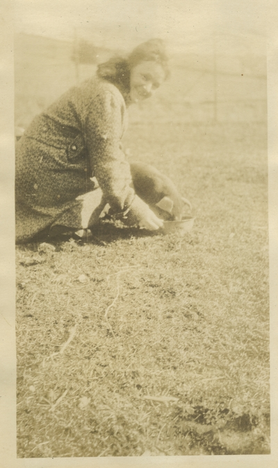 unidentified woman feeding a pig [illegible writing on back]