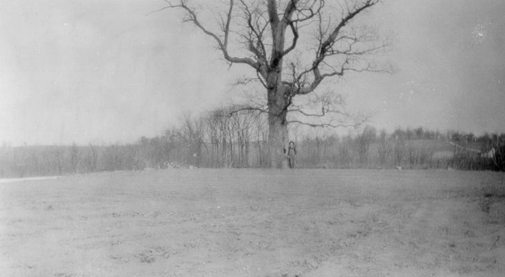 On top of the hill south of and above the forks of Grassy Lick. The old oak tree marks the approximate location of the original Methodist Meeting house. The old burying ground adjacent to the church lot is covered by brush and briars just beyond and East and northeast of the large oak tree