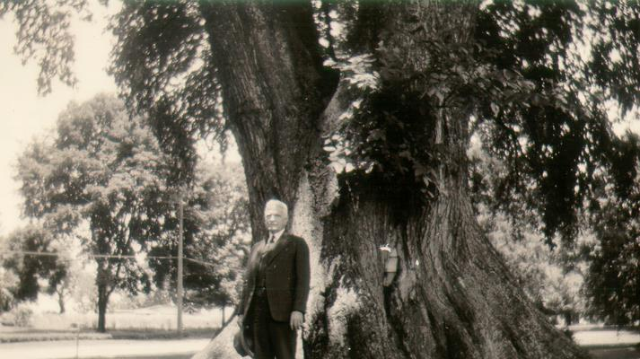 Mr. Wilson standing by Ancient Elm; Marietta, Ohio