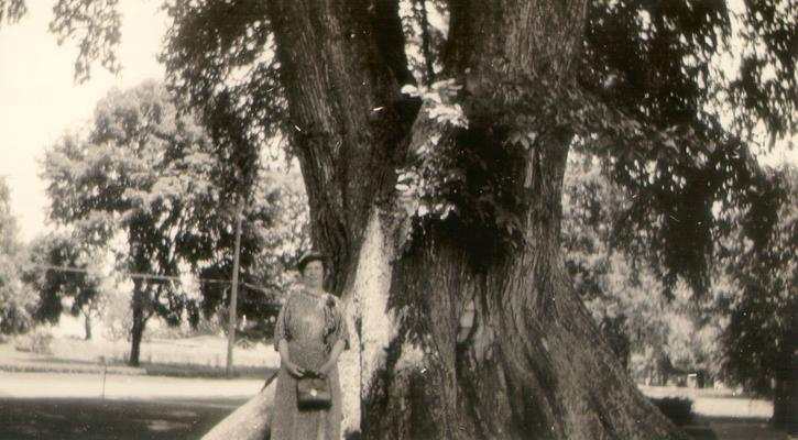 Mary Shelby Wilson standing by Ancient Elm; Marietta, Ohio