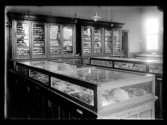 Geological display cases