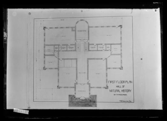 Copy of architect's drawing, Miller Hall, notation                          First floor plan Hall of Natural History by FP Anderson, T.S. Hamilton, Del