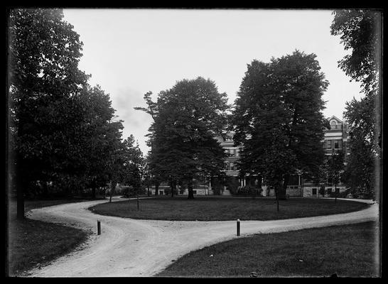Yard at Patterson Hall