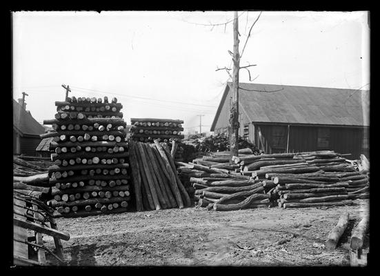 Cut timber on lot