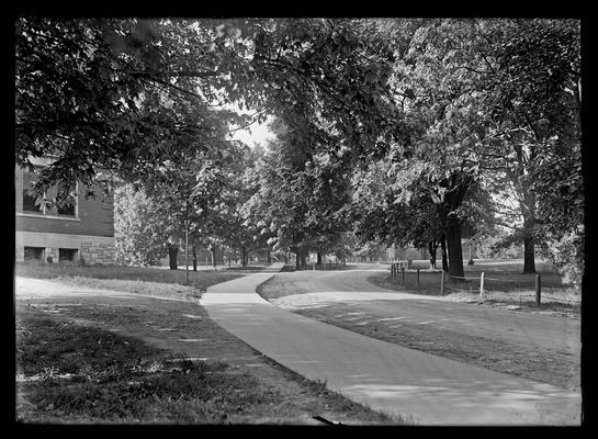Main drive near Education Building (Frazee)