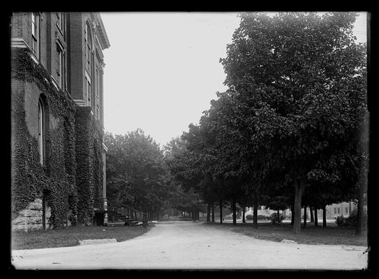 Campus view looking up avenue, Administration Building (Main Building) to left