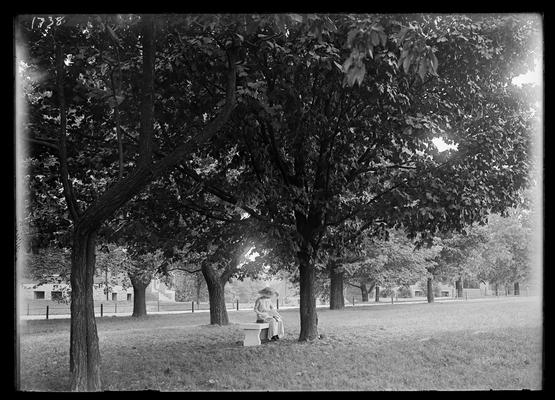 Woman on bench under trees, Frazee in left background