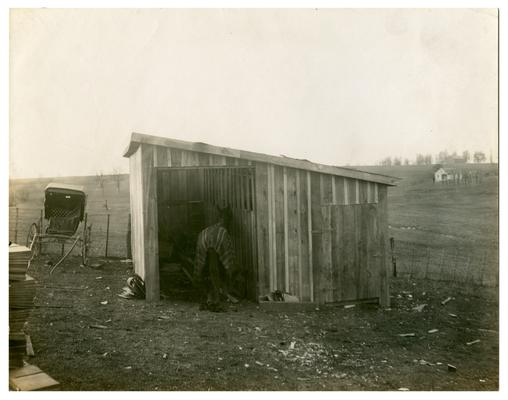 Maddoxtown horse stable. Hand written on verso, Maddoxtown horse stable. (Four copies)