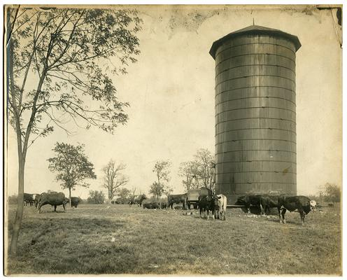 Image on farm silo used in the Bluegrass Child poster