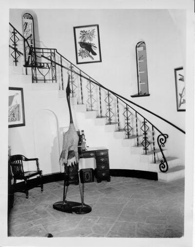 Interior view of Audubon Museum showing entrance hall and spiral staircase
