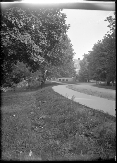 Lane with trees and building in background, presumed to be campus grounds