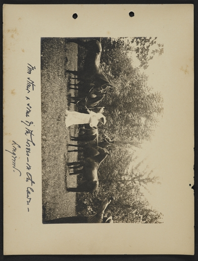 Mrs. [illegible] and some of the horses- on the lawn- Longwood