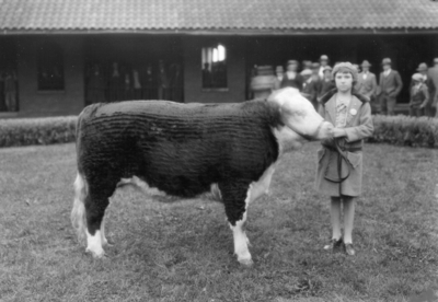Bourbon Stock Yard in Louisville; young womAn with steer