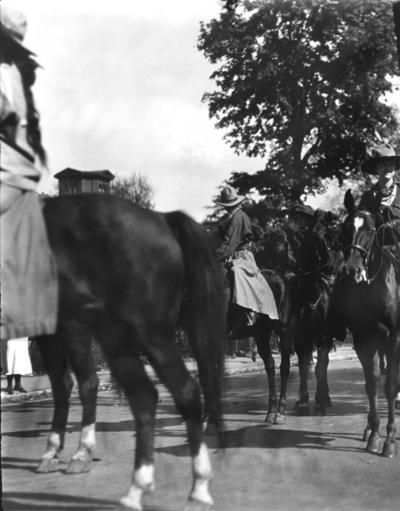 May Day parade horses