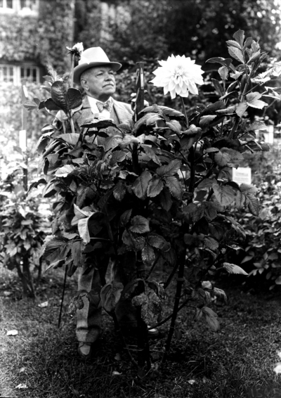 Dean F. Paul Anderson standing with the Dahlias