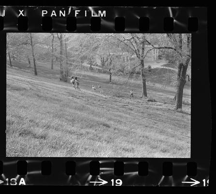 Group of children on a hillside