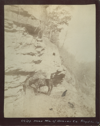 A horse beside a cliff near the mouth of Beaver Creek in Floyd County, Kentucky