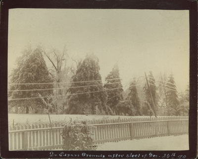 View of Dr. Edgars' grounds in Lexington, Kentucky after the sleet of December 23, 1890