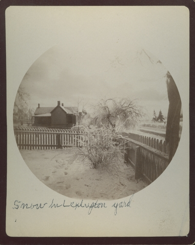 View of Dr. Edgars' house and grounds in Lexington, Kentucky after the sleet of December 23, 1890