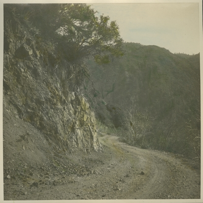 Hand-tinted photograph of a country road