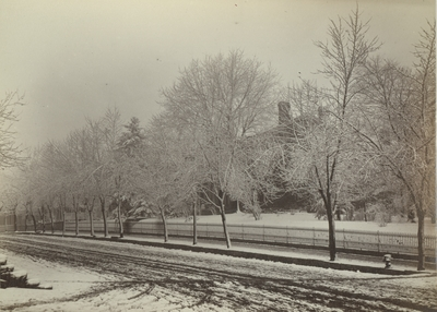 Snow scene taken at the corner of Broadway and High Streets in Lexington, Kentucky, March 29, 1883