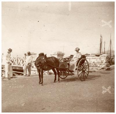 Unidentified woman sitting in horse-drawn buggy; handwritten on back in ink                              Taken near the / wharf Iloilo Panay / P.I. / Sept. 1902