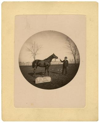 Unidentified man with horse, sign states                              Ed Mack / P.A. Brady; removed from pg. 2 of album