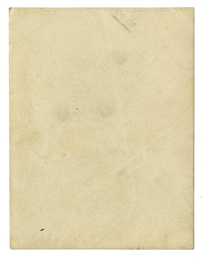 Statue of Liberty, albumen print