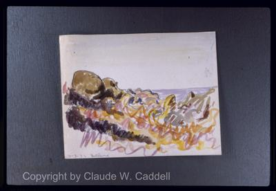 Harlan Hubbard watercolors