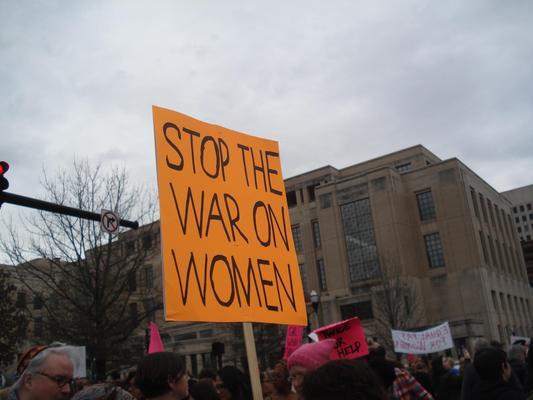 Women's March in Lexington, Kentucky, photographs taken by Diane Arnson Svarlien