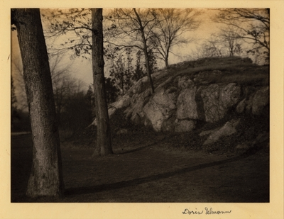 Central Park, Rock formation surrounded by tall trees. [on back]