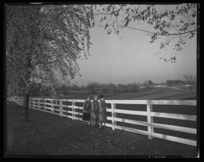 Calumet Farm; exterior; man and two women standing next to fence                             bordering property