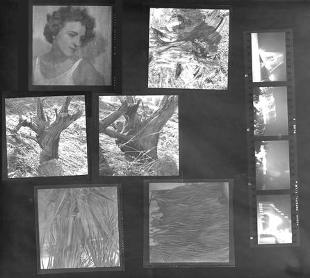 A proof sheet of ten photographs of landscapes and one of a woman, taken by John Tuska while in the Navy